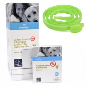 Cerca Offerte di protection collare barr cane e acquista online