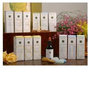 Trova Offerte di zef12 belson plant stv e compra online